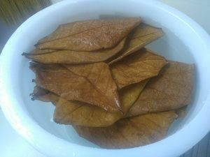 Make indian almond leaves water