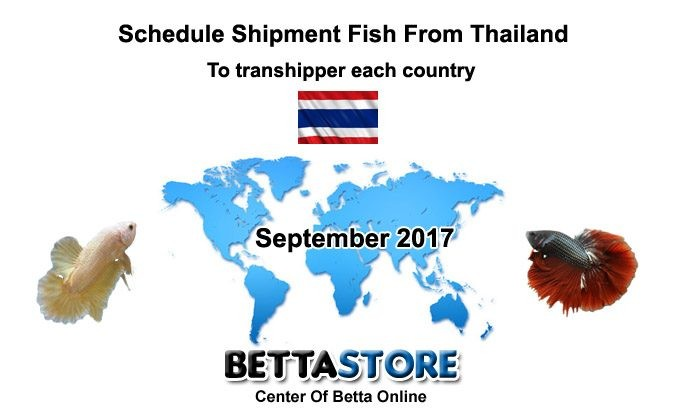 Sep 2017 schedule shipment fish from Thailand
