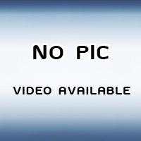 Baby Koi Halfmoon Plakat For Sale – Koi Betta Fish