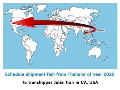 Schedule transhipper Julie Tran in CA, USA support bettas from Thailand 2020