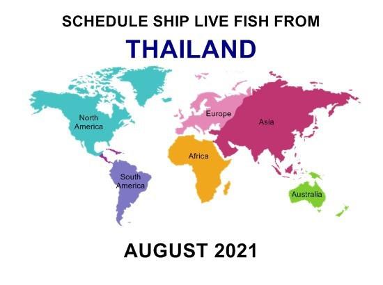shipment fish